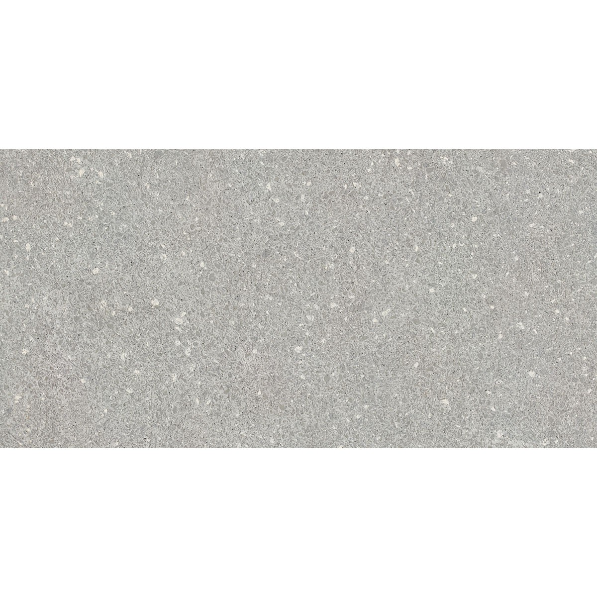 24 x 12 In. Gray Porcelain Floor Tile - 8 Pcs/Case (15.50 sq.ft/Case) (MS60BP)