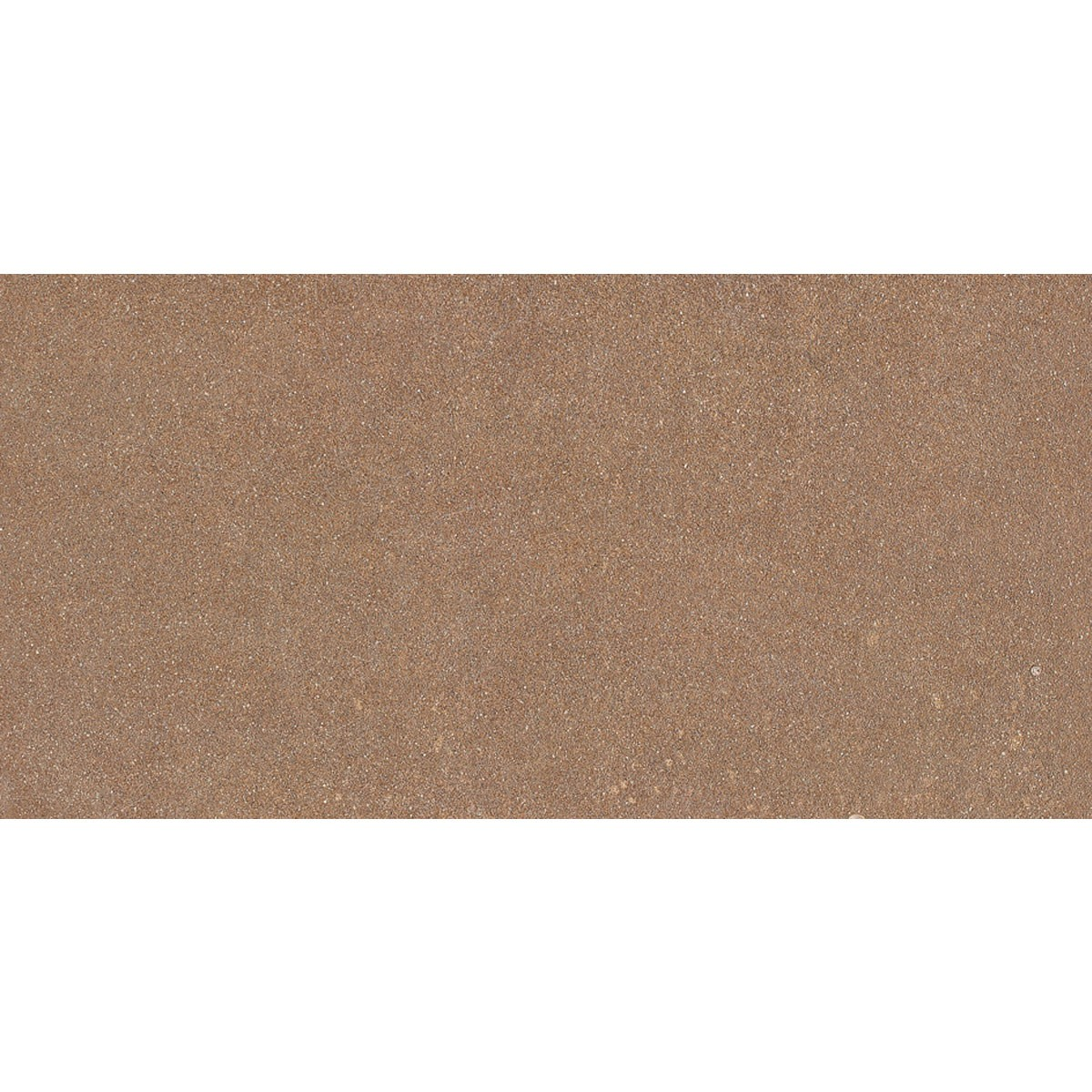 24 x 12 In. Brown Porcelain Floor Tile - 8 Pcs/Case (15.50 sq.ft/Case) (BS60D)