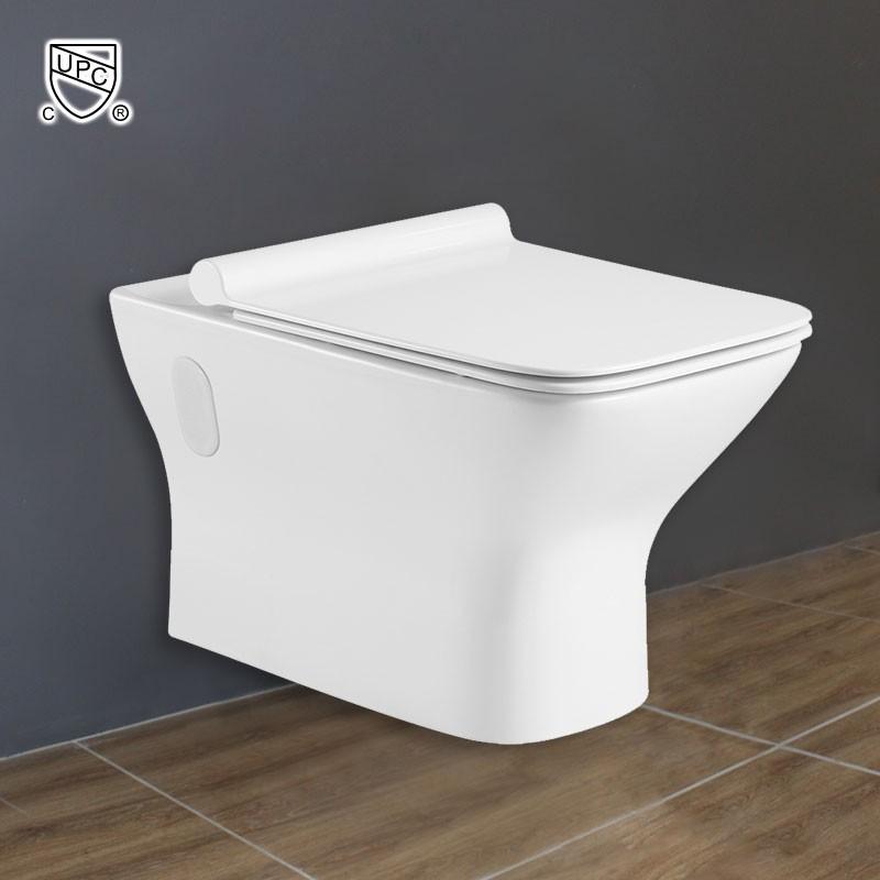 Wall Hung Toilet Bowl - White (DK-ZBQ-12248D)