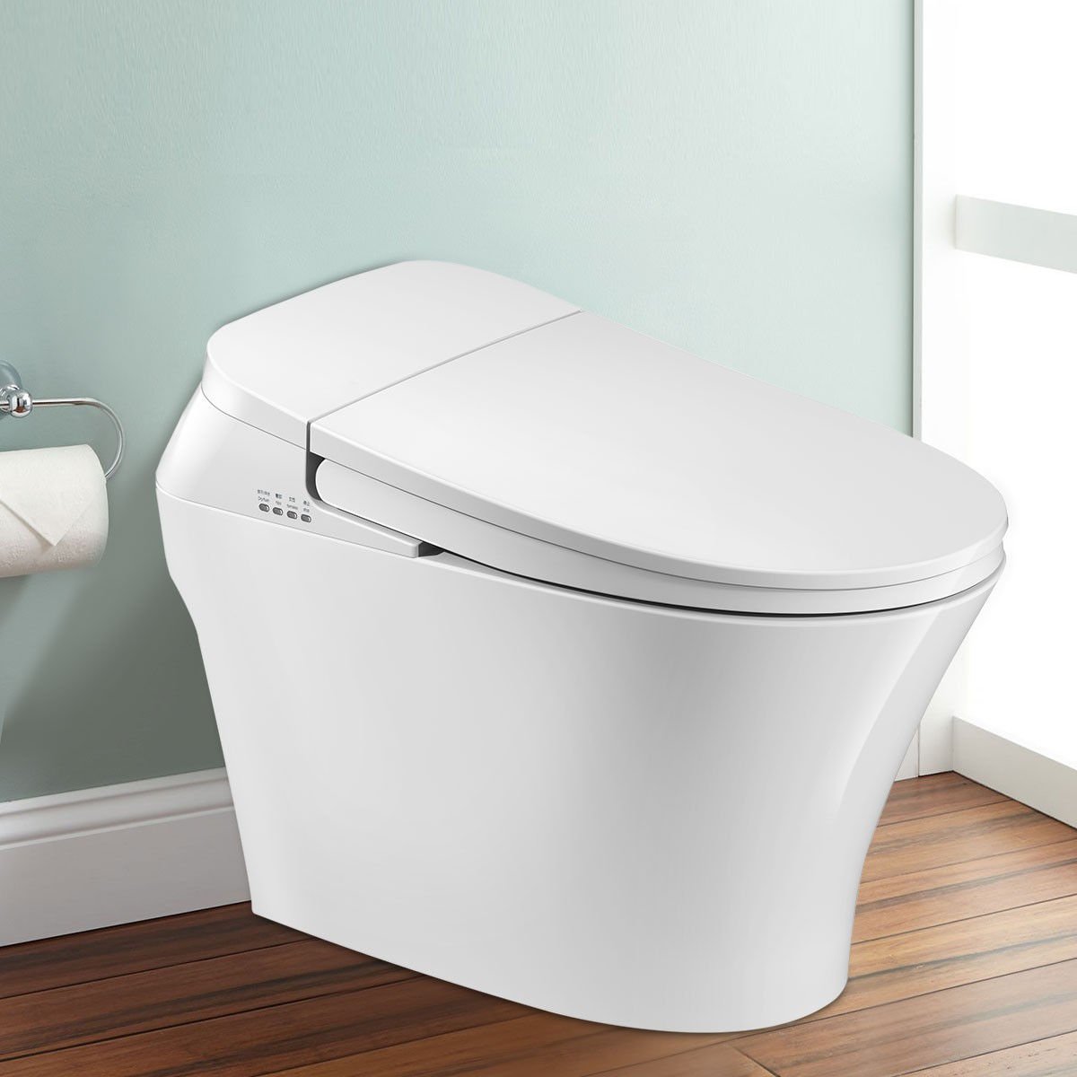 White Elongated One-piece Smart Toilet with Bidet Seat (DK-QY-001A)