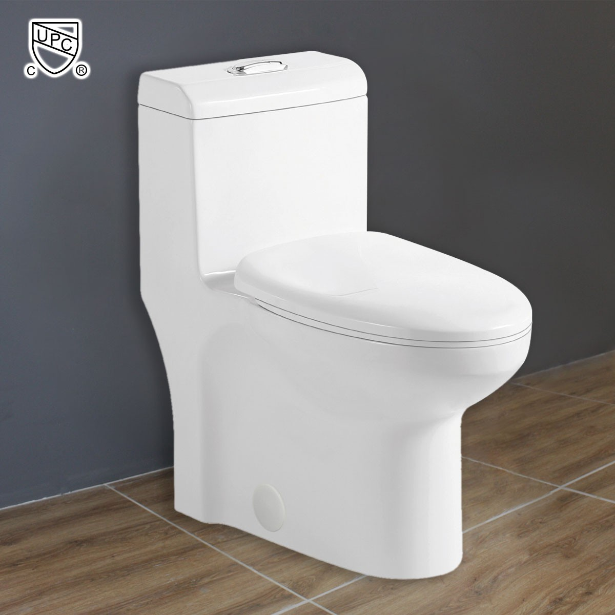 Dual Flush Siphonic Water Saving One-piece Toilet (DK-ZBQ-12212)