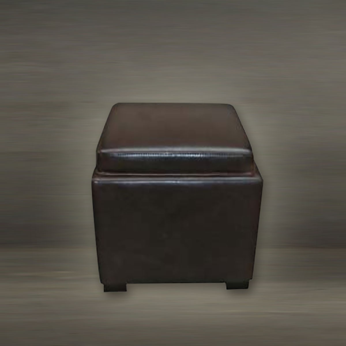 Leather Storage Ottoman (PJO006)