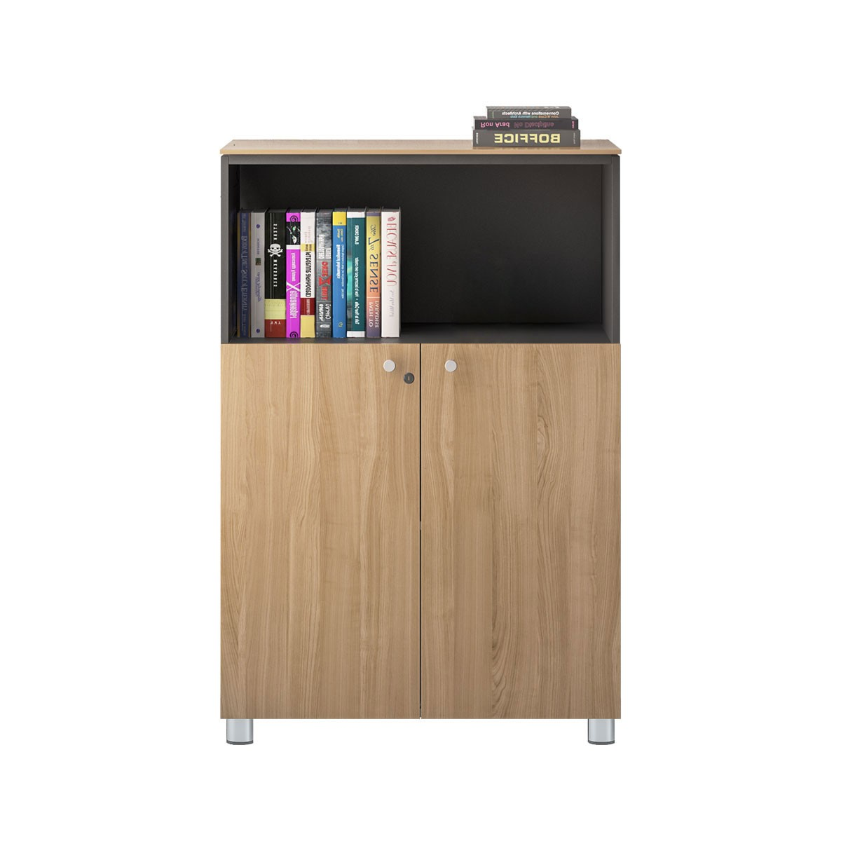 Office Storage Cabinets (GA21B)