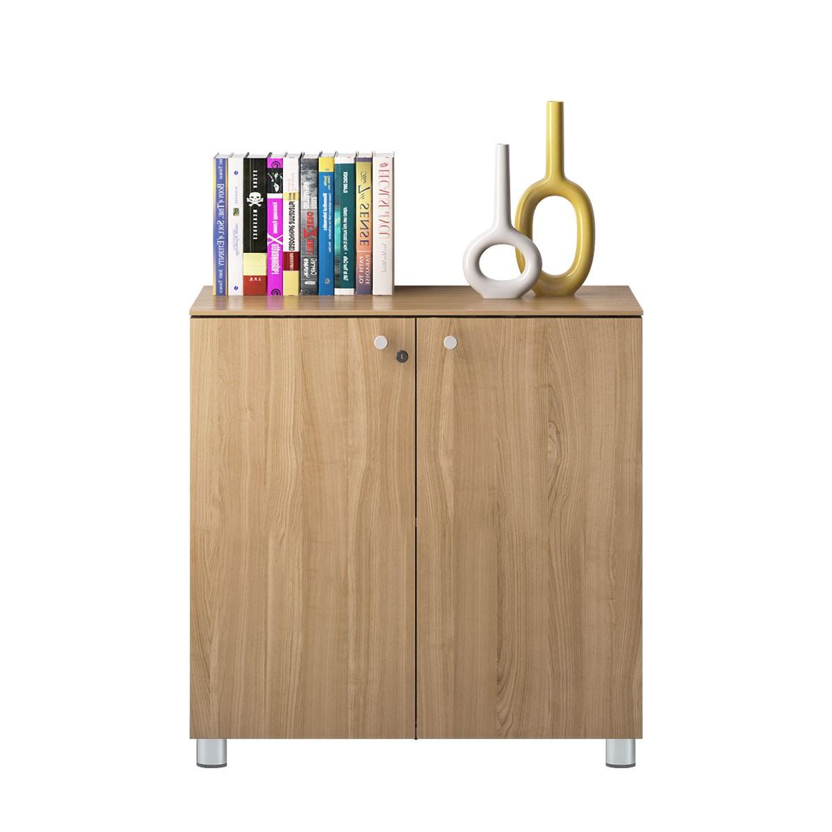 Office Storage Cabinets (GA11B)