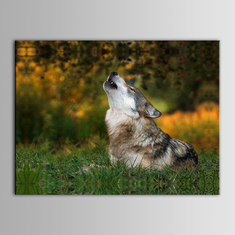 Animal Printed Oil Painting on Chemical Fiber Canvas (DK-PH-DH18)