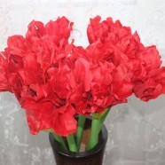 "Artificial Clivia Flower/Piece - 20"" - Red"