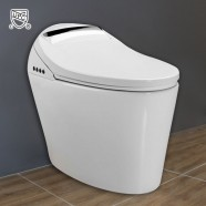 White Elongated One-piece Smart Toilet with Bidet Seat (DK-AL-11111)