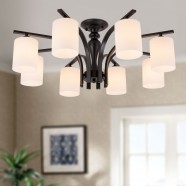 8-Light Black Wrought Iron Chandelier with Glass Shades (DK-5302-8)