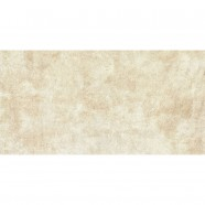 24 x 12 In. Beige Porcelain Floor Tile - 8 Pcs/Case (15.50 sq.ft/Case) (GN60B-2)