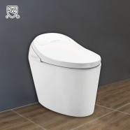 White Elongated One-piece Smart Toilet with Bidet Seat (DK-AL-11105)