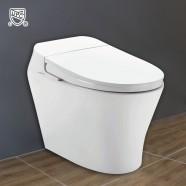 White Elongated One-piece Smart Toilet with Bidet Seat (DK-AL-11106)