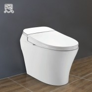White Elongated One-piece Smart Toilet with Bidet Seat (DK-AL-11106-C)