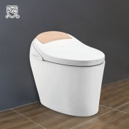 White Elongated One-piece Smart Toilet with Bidet Seat (DK-AL-11105-A)