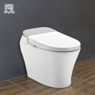 White Elongated One-piece Smart Toilet with Bidet Seat (DK-AL-11106-B)