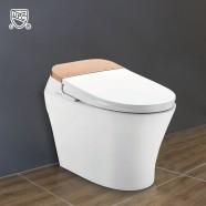 White Elongated One-piece Smart Toilet with Bidet Seat (DK-AL-11106-A)
