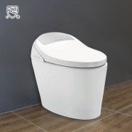 White Elongated One-piece Smart Toilet with Bidet Seat (DK-AL-11105-B)