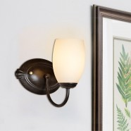 1-Light Black Iron Wall Sconce with Glass Shades (HKW31248-1)