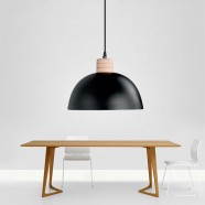1-Light Black Iron Modern Pendant Light (HYMUP1209D-1)