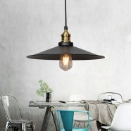 1-Light Iron/Glass Industrial Pendant Light (HKP31250-1L)