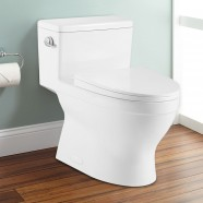 Single Flush High Efficiency Water Saving Elangated Toilet (DK-ZBQ-12234)