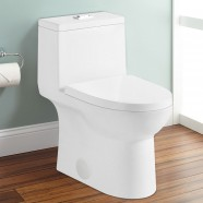 Dual Flush Siphonic Water Saving Ceramic One-piece Toilet (DK-ZBQ-12213)
