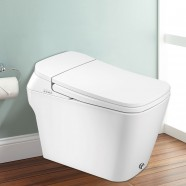 White Elongated One-piece Smart Toilet with Bidet Seat (DK-DY-001A-Z)