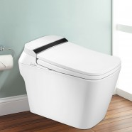 White Elongated One-piece Smart Toilet with Bidet Seat (DK-DY-003B)