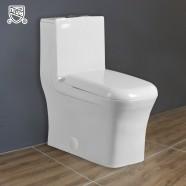Dual Flush Siphonic One-piece Toilet (DK-ZBQ-12044)