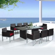 PE Rattan 9 Pieces Dining Set: Dining Table, 8 Chairs (LLS-6060+1060)
