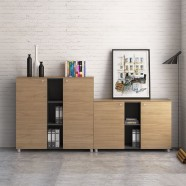 Office Storage Cabinets (GA31B)