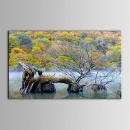 Landscape Printed Oil Painting on Chemical Fiber Canvas (DK-PH-DH36)