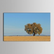 Landscape Printed Oil Painting on Chemical Fiber Canvas (DK-PH-DH38)
