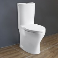 Dual Flush High Efficiency Water Saving One-piece Toilet (DK-ZBQ-12238)