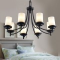 8-Light Black Wrought Iron Chandelier with Glass Shades (DK-8110-8)