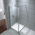 40 x 75 In. Walk-in Shower Door (DK-D202-100)
