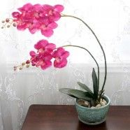 """Artificial Butterfly Orchid Flower/Piece - 35"""""""