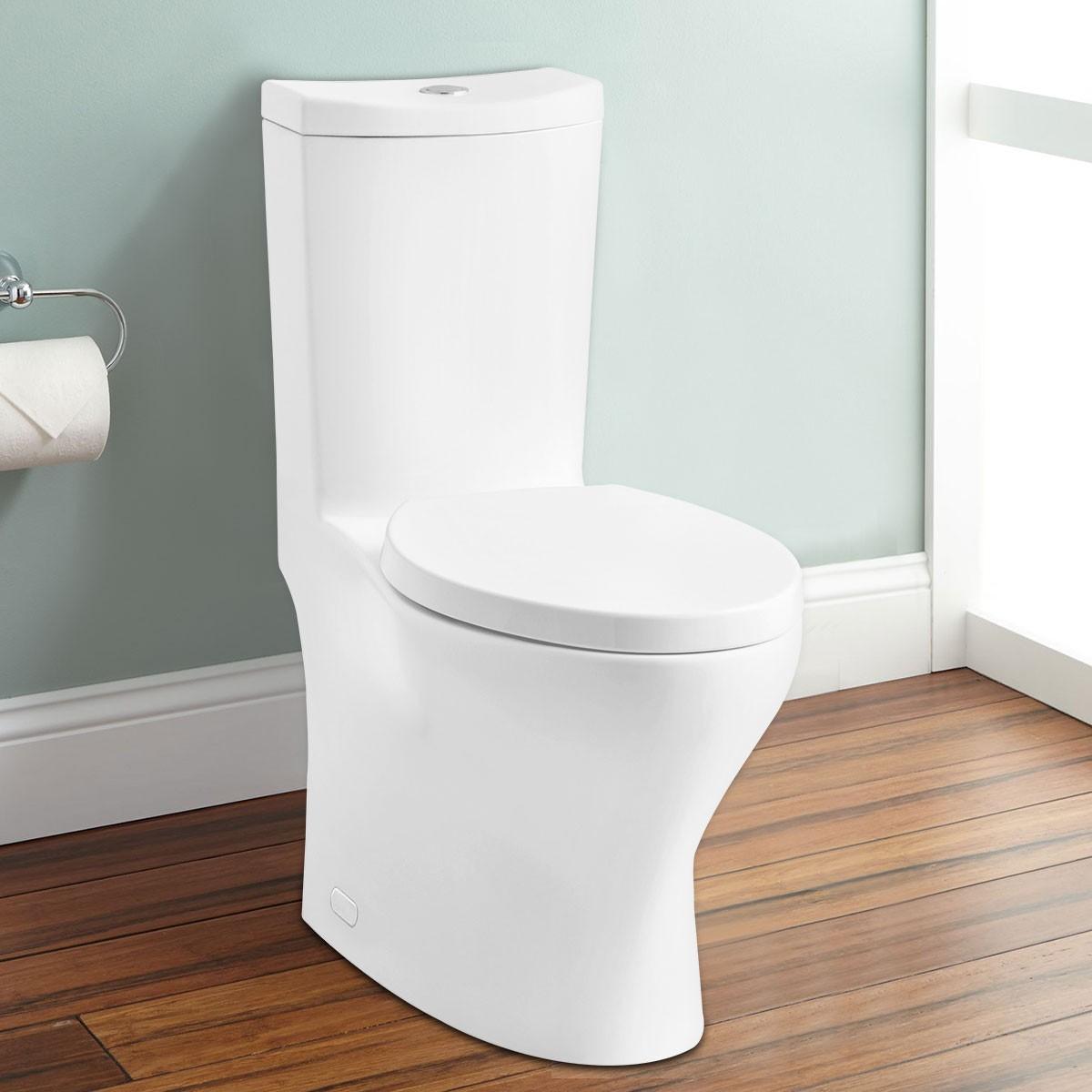 Toilette Monopièce Économique d'Eau en Céramique à Double Chasse (DK-ZBQ-12238)