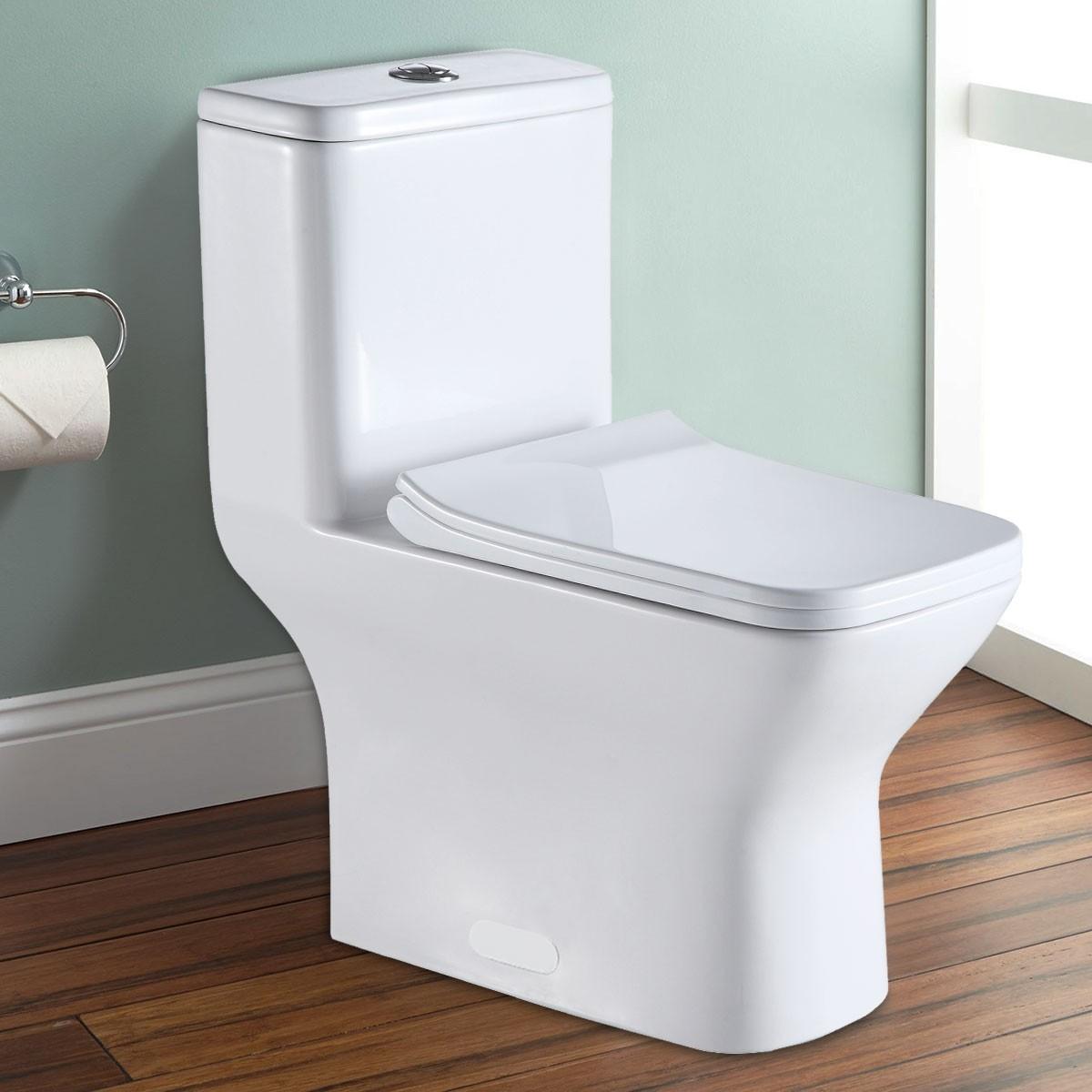Toilette Monobloc en céramique à économie d'eau à Double Chasse (DK-ZBQ-12248A)