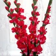 """Artificial Gladiolus Flower/Piece - 44"""" - Dark Red"""