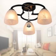 Lustre en Fer Forgé avec Abat-jour en Verre à 3 Ampoules - Noir (DK-820-3)