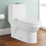Toilette Monopièce Économique d'Eau en Céramique à Double Chasse (DK-ZBQ-12050)