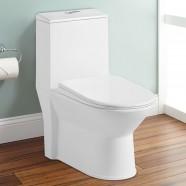Toilette Monopièce Économique d'Eau en Céramique à Action Siphonique (DK-ZBQ-12227)