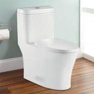 Toilette Monopièce à Double Chasse et à Action Siphonique (DK-ZBQ-12243)