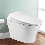 Toilette Intelligente Allongée avec Bidet Intégré - Blanc (DK-QY-001A)