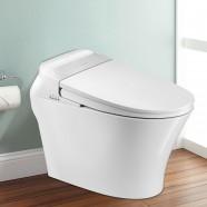 Toilette Intelligente Allongée avec Bidet Intégré - Blanc (DK-QY-005A)