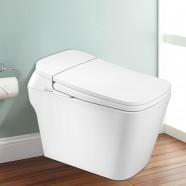 Toilette Intelligente Allongée avec Bidet Intégré - Blanc (DK-DY-001A)