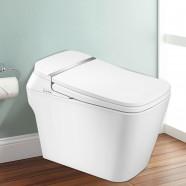 Toilette Intelligente Allongée avec Bidet Intégré - Blanc (DK-DY-002)