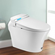 Toilette Intelligente Allongée avec Bidet Intégré - Blanc (DK-LY-001A-Z)