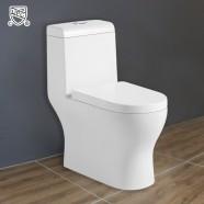 Toilette Monopièce Économique d'Eau en Céramique à Action Jet Siphonique (DK-ZBQ-12218)