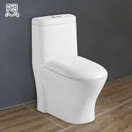 Toilette Monopièce Économique d'Eau en Céramique à Action Siphonique (DK-ZBQ-12219)